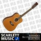 Tanglewood 12 String Acoustic Guitars