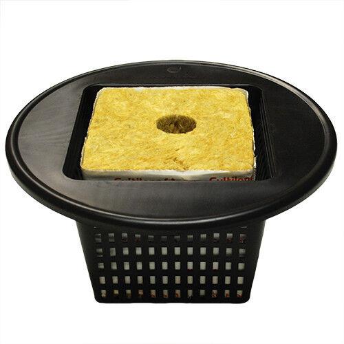 "6/"" Mesh Net Pot Lid for 5-3 GALLON BUCKET LIDS Hydroponics Multi Pack Option NEW"