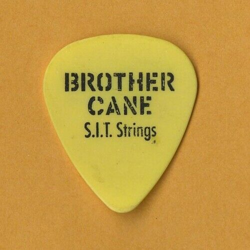 Brother Cane 1995 Seeds Concert Tour Damon Johnson Guitar Pick - $3.25