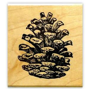 PINE-CONE-Large-mounted-rubber-stamp-19