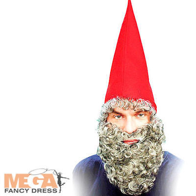 Red Dwarf Hat+ Beard Fancy Dress Gnome Elf Christmas Adults Costume - Red Beard Costume