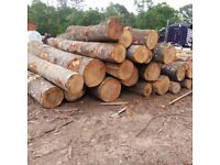 Buy Online Wood & Timber - Glehand