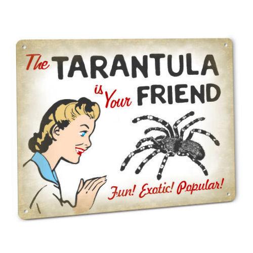 Funny Tarantula SIGN for Terrarium or Cage Spider Living Black Arachnid