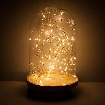 LED Bell Jar with 20 Warm White Micro Fairy Xmas Lights Removable Base