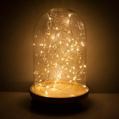 Glass Bell Jar with 20 Warm White Micro LED Fairy Christmas Decoration Lights