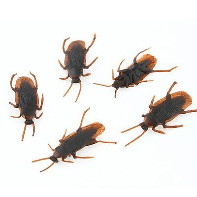 20Pcs Realistic Simulation Cockroach Plastic Rubber Roach Bug Joke Toy Halloween (Plastic Bugs)