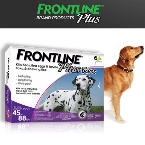 FRONTLINE PLUS DOGS 45-88Lbs FLEA & TICK CONTROL 6 DOSES NEW, SEALED*