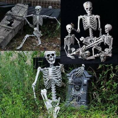 New Poseable Full Life Size Party Prop Decoration Human Skeleton Halloween 40cm