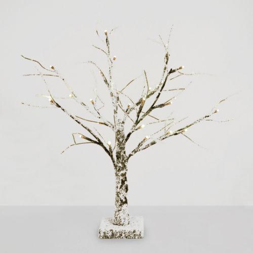 Bonsai Tree Lamp Ebay