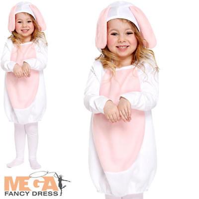 Fancy Dress Easter Bunny Animal Girls 2-3 Years Costume New (Cute Easter Bunny-kostüm)