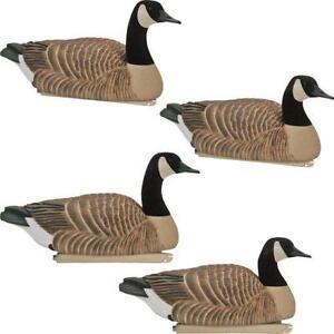 canada goose sale buy now