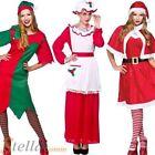 Women's Santa Claus Costumes