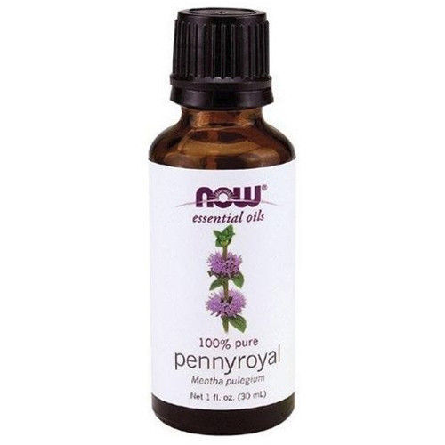 NOW Foods 1 oz Essential Oils and Blend Oils - FREE SHIPPING! Pennyroyal