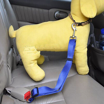 2x D BLUE Dog Pet Puppy Safety Seatbelt for Car Vehicle Seat Belt Harness Lead