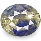 Oval Bi-Color/Multi-Color Loose Sapphires