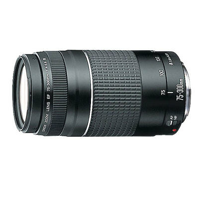 как выглядит Фотоаппарат Canon EOS 80D 18-55mm STM 75-300mm YN 600EX RT 5 Years Warranty 62 Piece Pro KIT фото