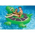 Turtle Pool Floats & Rafts