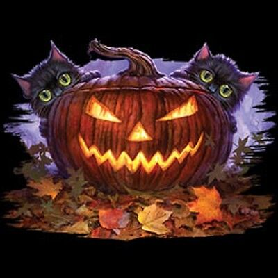 New Scaredy Cats Halloween   Tshirt    Sizes/Colors - Cats Halloween