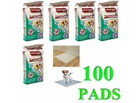 100 X SOFT DOG POO CAT PET POTTY PUPPY TRAINING PADS LARGE PEE MAT PAW PRINT NEW | pets at home |