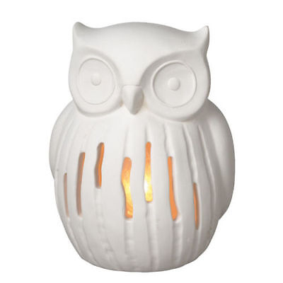 Let an owl shed some light in your home