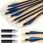 Vanes Complete Arrows for Archery