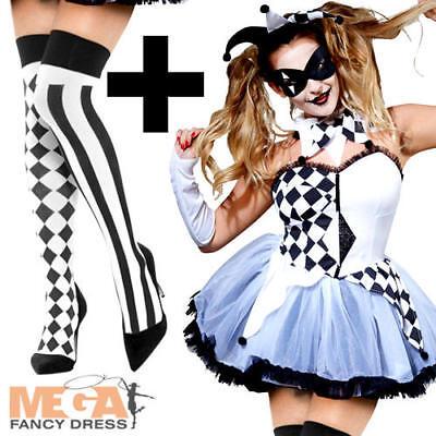 Harlequin Jester + Stockings Ladies Fancy Dress Halloween Womens Adults Costume (Harlequin Jester Halloween Costume)