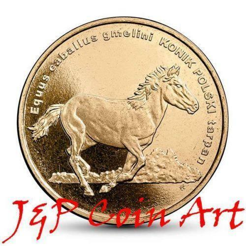 how to polish old silver coins