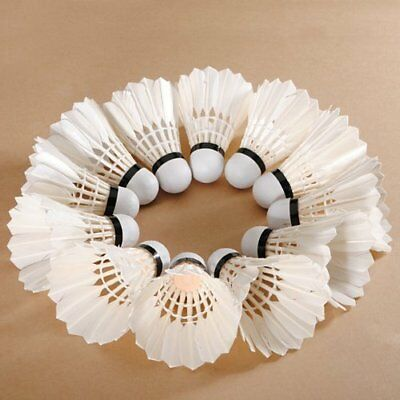 12 PCS White Feather Birdies Badminton Ball Shuttlecocks Sport Training Train