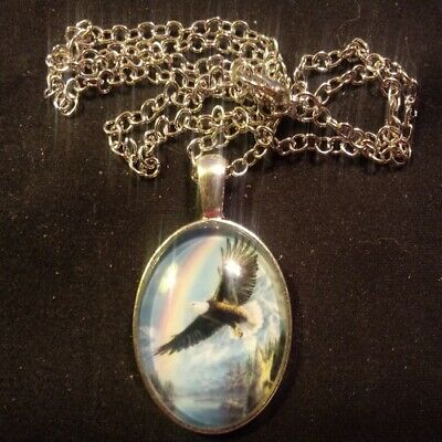 Bald eagle, Glass Cabochon Photo Necklace, silver chain