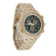 Mens Citizen Eco Drive Watch Perpetual