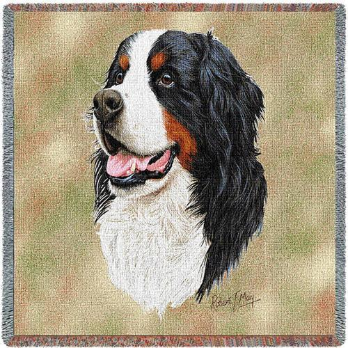 Lap Square Blanket - Bernese Mountain Dog by Robert May 1153