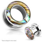 Mother of Pearl Mother of Pearl Silver Fashion Jewelry