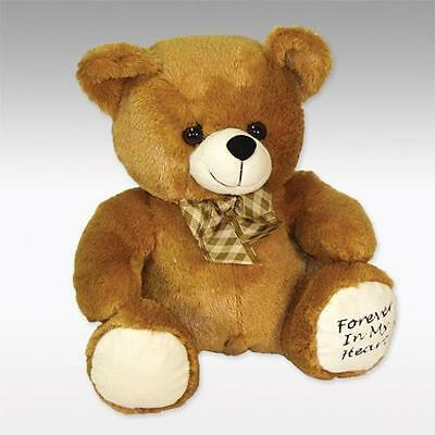 Brown Huggable Teddy Bear Infant/Child/Pet Funeral Cremation Urn,10 Cubic Inches