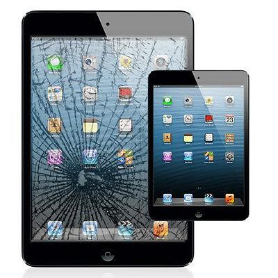 Apple iPad MinI 1 & 2  Digitizer Glass Screen Replacement Repair Service blk/whi