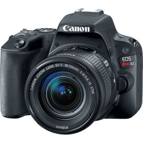 Canon EOS Rebel SL2 DSLR Camera with EF-S 18-55mm IS STM Lens 2249C002