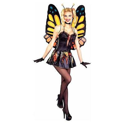 Sexy Butterfly Monarch Insect Animal Dress Up Cute Halloween Sexy Adult Costume