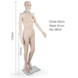 Realistic Female Mannequin for Clothes Display, Window Dressing Doncaster East Manningham Area Preview