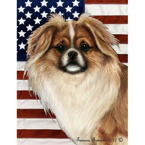 Patriotic (D2) House Flag - Red and White Sable Tibetan Spaniel 32476