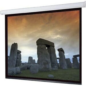 Electronic Projection Screen