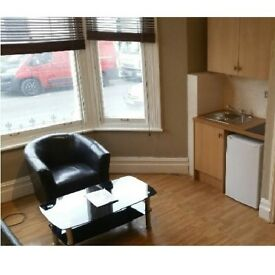 Large double semi-studio flat in a popular area of Zone 2