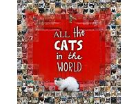 ALL THE CATS IN THE WORLD COFFEE TABLE BOOK
