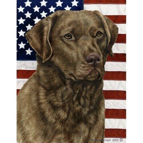 Patriotic (D2) House Flag - Chesapeake Bay Retriever 32070