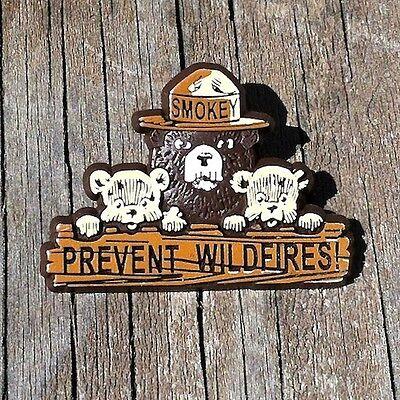 Original SMOKEY THE BEAR PINBACK PIN Badge Button Cubs 1960s PREVENT WILDFIRES