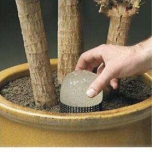 urlaubsbew sserung rain bird wasserwurst f r pflanzen. Black Bedroom Furniture Sets. Home Design Ideas