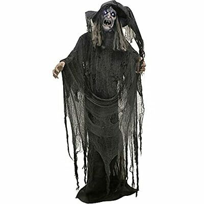 Haunted Hill Farm 5.7 ft. Animated Standing Witch Halloween Prop   Flashing W...