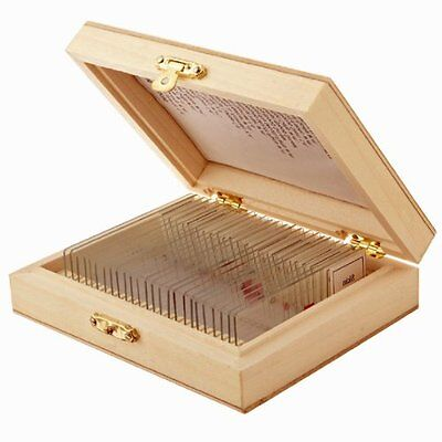 Prepared Microscope Slide Set Biological Science Education Wooden Case Fitted Tv