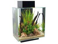 Fluval Edge 46 Litre Aquarium/Fish Tank + extras - Black