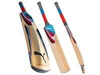 Cricket Bat - Puma Karbon 3000