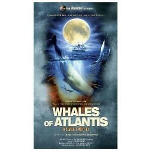NEW - WHALES OF ATLANTIS: IN SEARCH OF