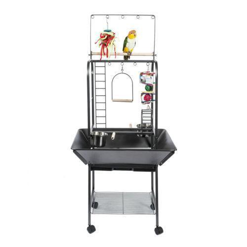 Parrot Stand Birds Ebay